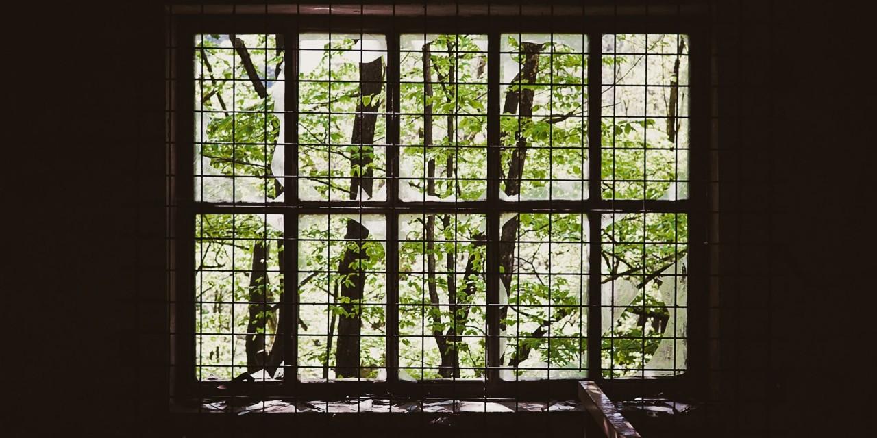 Das 'Fenster'